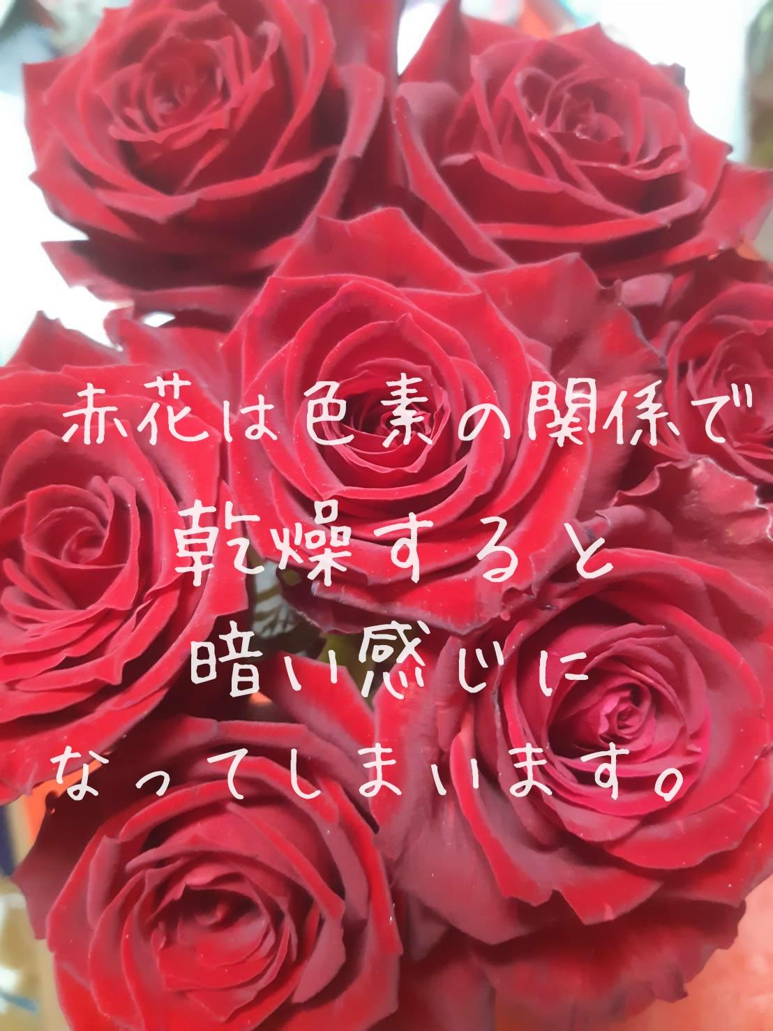 赤バラの加工